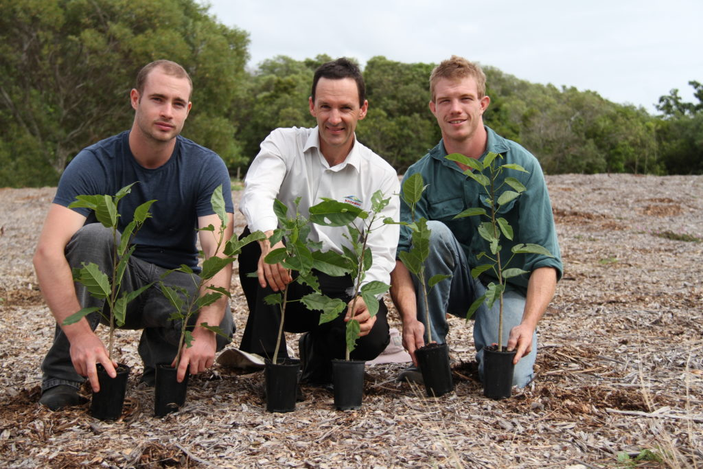 Tree planting in the Bundaberg Region