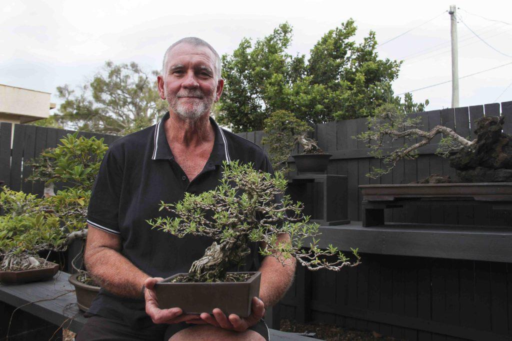 Council parks and gardens team member Rod Lovett with his bonsai collection.