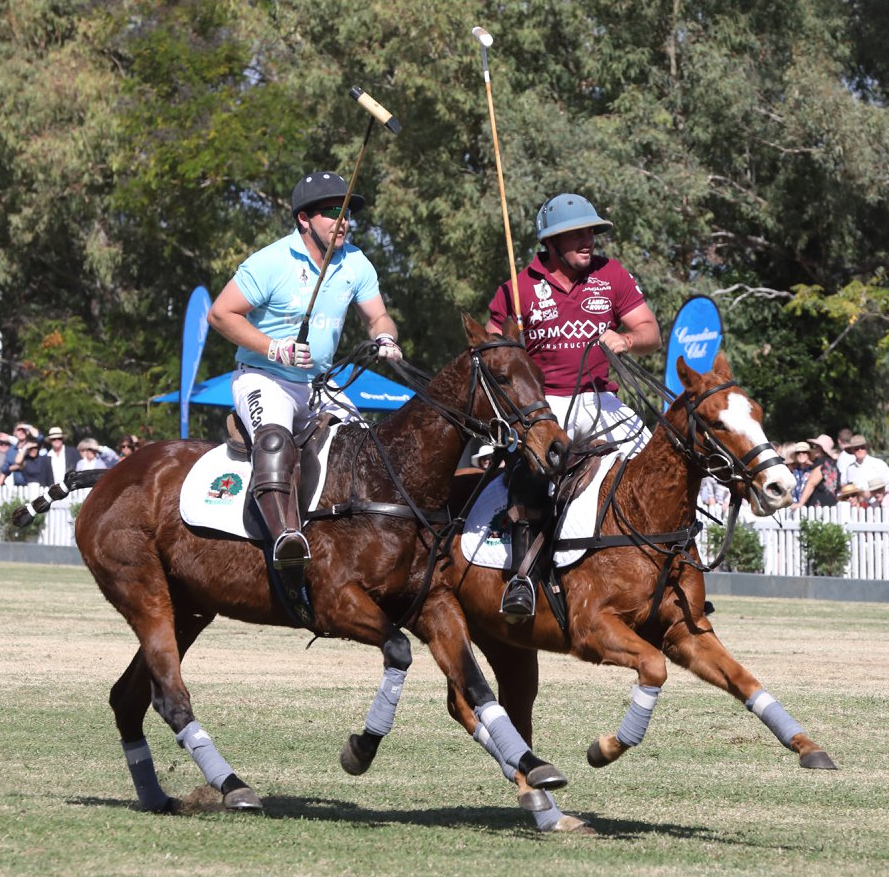 Pop-up polo is coming to Bundaberg