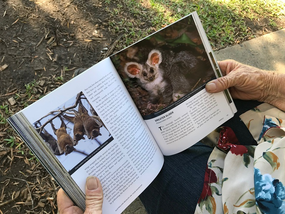 Stephanie Jackson's book about Bundaberg Region wildlife.