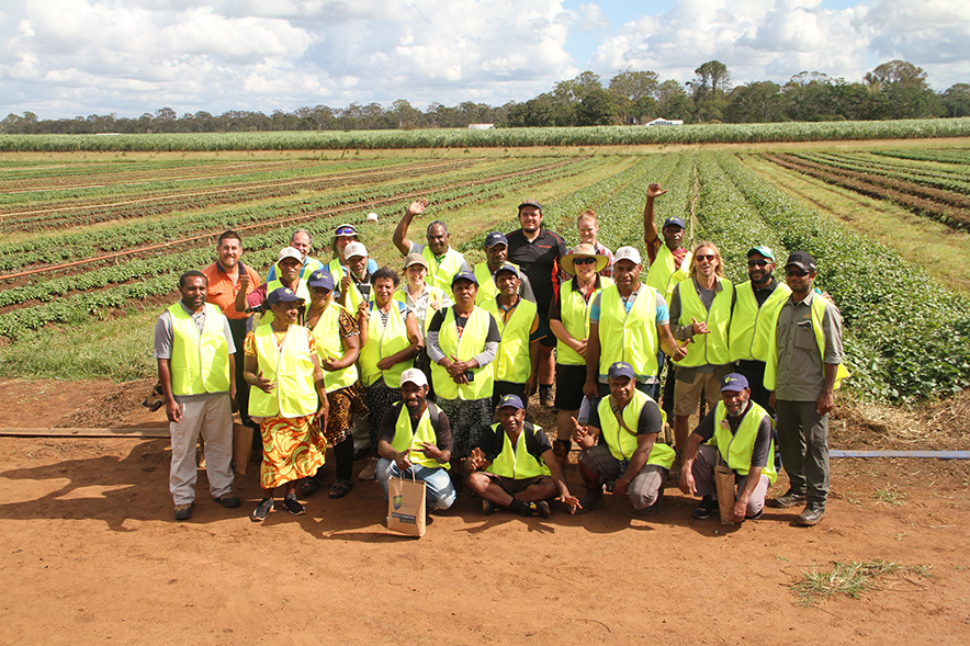 The PNG farmers visited sweet potato farms around the region.