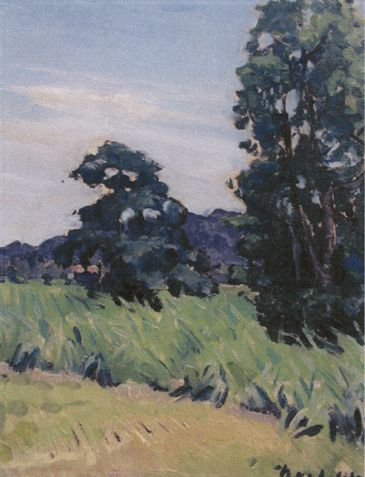 Canefields and Clouds by artist Noel Wood, Bundaberg Regional Galleries collection.