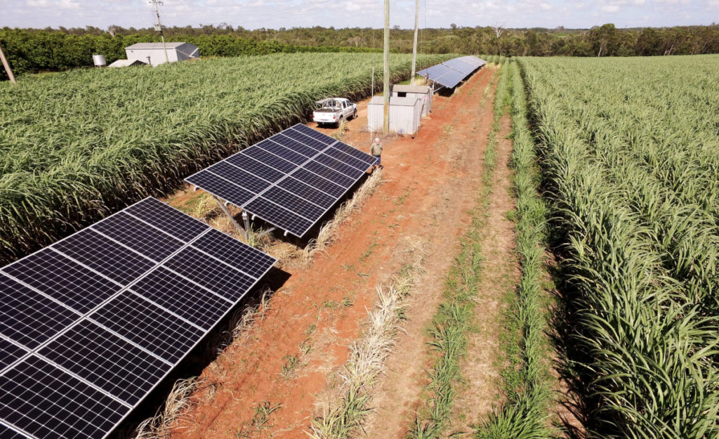 solar irrigation trial field day