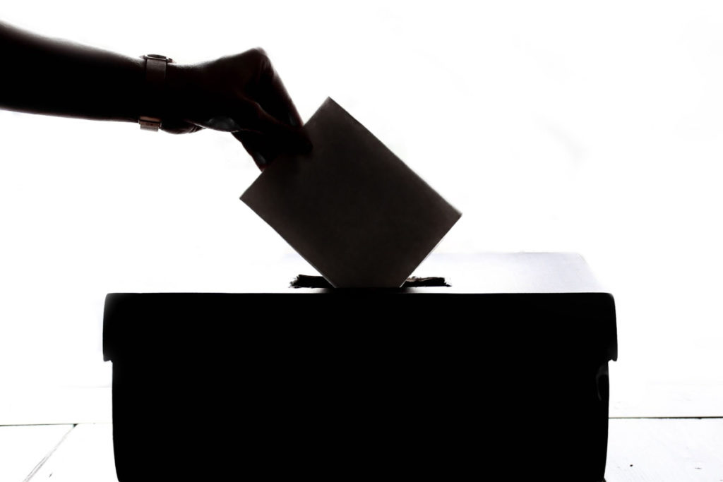 Could we all avoid those crowds with the introduction of electronic voting?