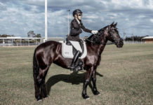 Bundaberg Winter Dressage Championships