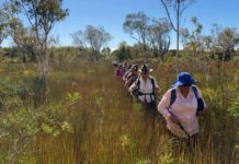 Bundaberg Bushwalking Club