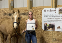 Sigrid Peters from Horse and Habit Change is offering Equine Assisted Learning.