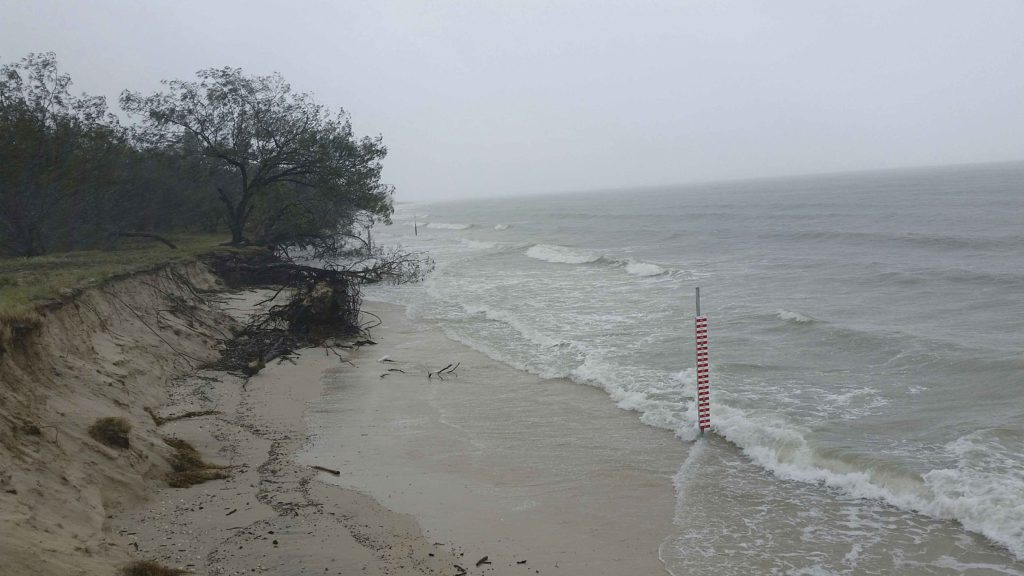 The Coastal Hazard Adaption Strategy survey results have been revealed.