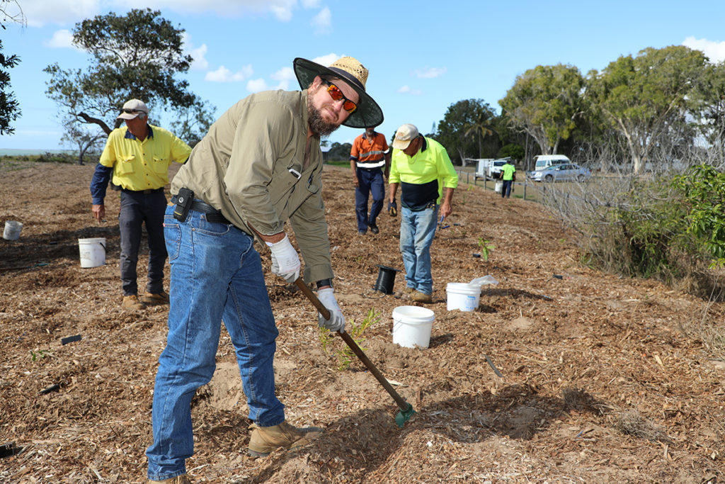Moore Park Beach foreshore revegetation project.