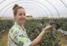 Multikraft Australian Biotech Agricultural Centre of Excellence part owner Jilli O'brien with her blueberry plantings