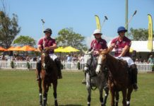 Professional Polo Players take to the feild at Bundaberg's first Pop-Up Polo event