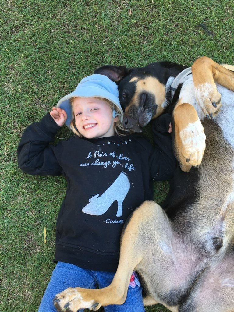 ADOPTION: Bruce brightens the lives every single day of his new family, and absolutely loves the kids especially!! Photo: Red Collar Rescue Facebook