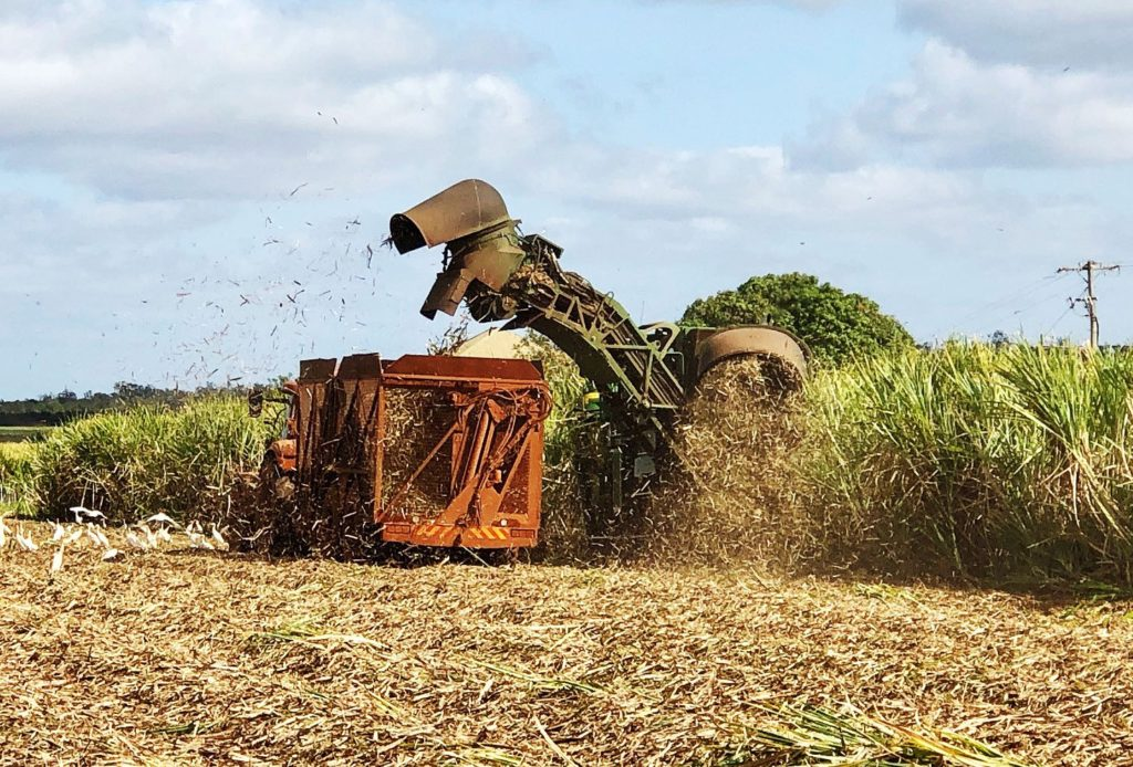 Isis Central Sugar Mill cane harvester