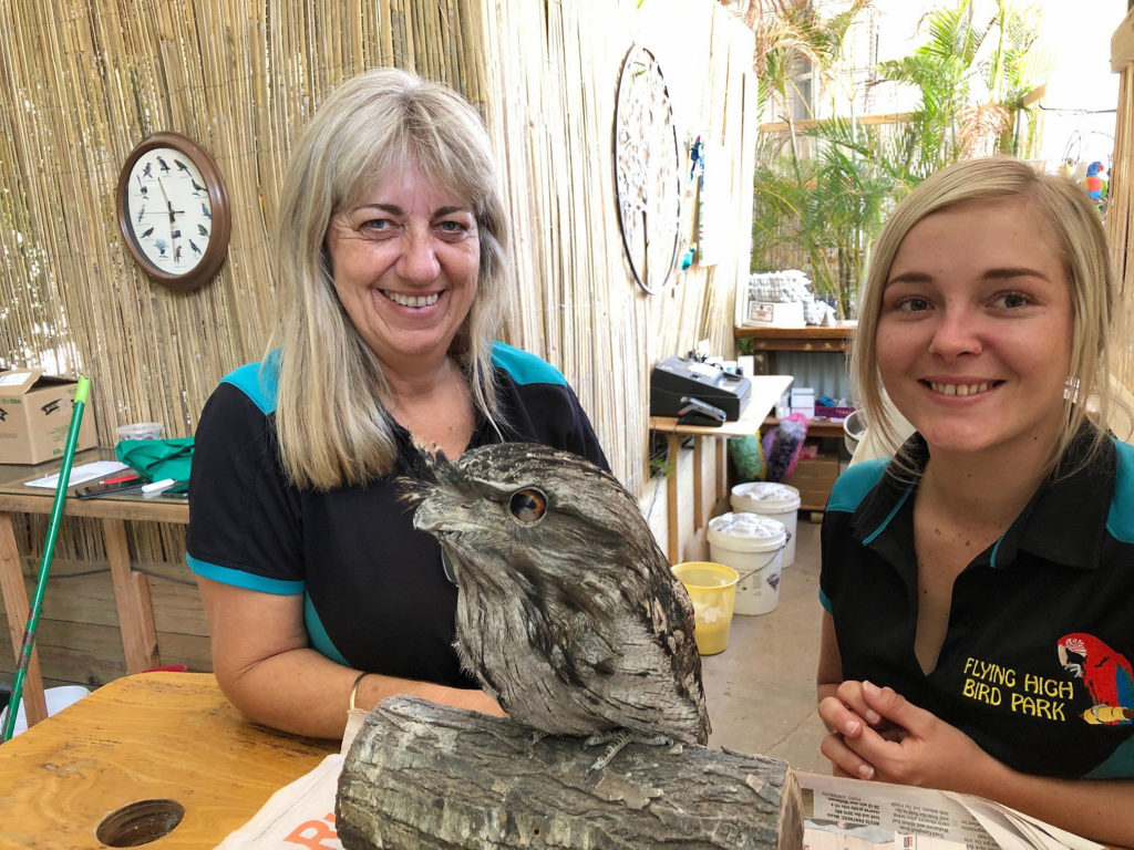 """Hoot"" the injured Tawny Frogmouth is a feathered favourite with Tanya Dodds and Tiah Hayes."