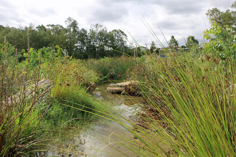 belle eden waterway