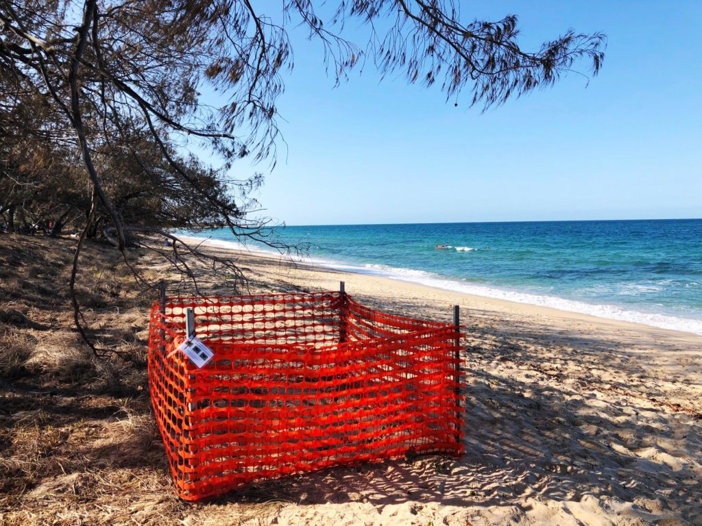 A protective enclosure advises beach goers that the turtle nesting site should remain undisturbed.