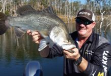 Dale Smith with the nice barramundi he caught at Lake Monduran recently