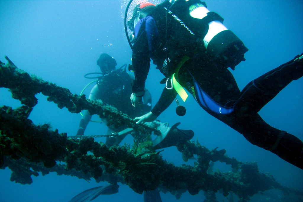 Divers check out the region's local wrecks