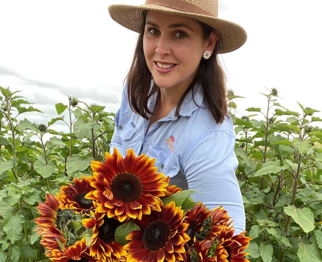 anastasi blooms ruby passion sunflowers