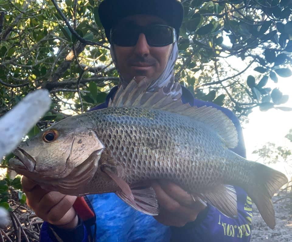 Jesse Spence with the lovely mangrove jack he caught recently.