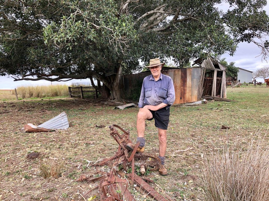 Old buildings and trees have been some of the favoured nesting sites for Indian Myna birds around Eric Lester's Cordalba property.