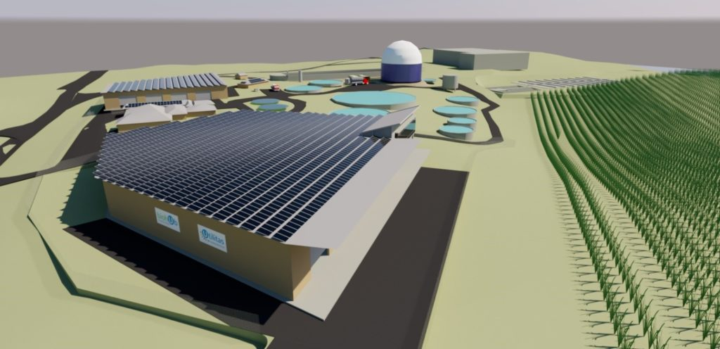 3D Concept of fully developed Bundaberg bioHub site (subject to planning and approvals).