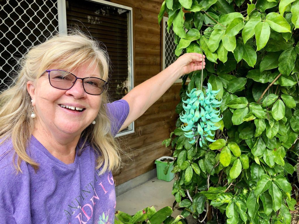 Pat with the glorious bloom of the jade vine. A beautiful trellis plant at their home on Duckpond Road.