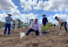 One Million Trees Bundaberg