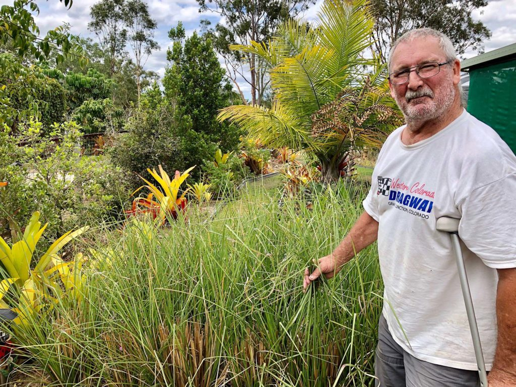 Greg Jackson with a section of the vetiver grass grown commercially on their property. The grass is a renowned environmental champion.