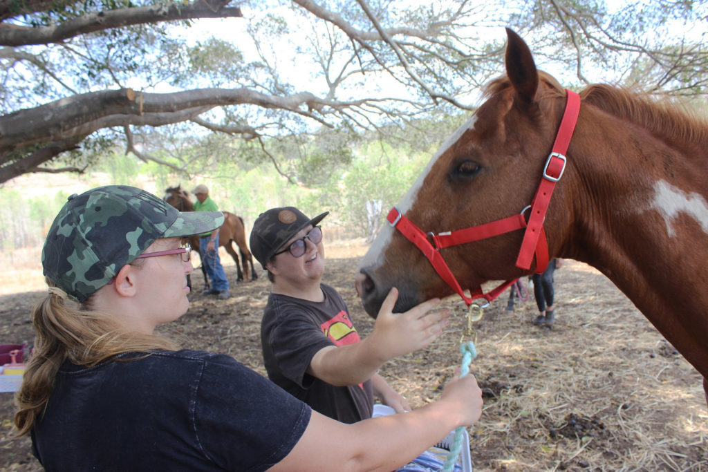 Rivendells equine therapy
